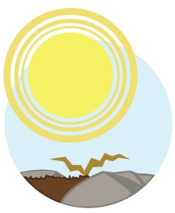Sol rocailleux - Soleil